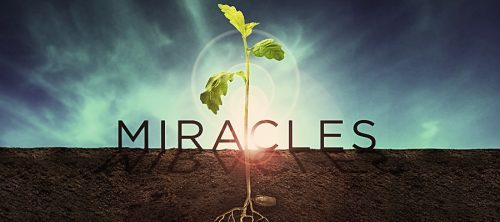 Jesus – First Miracle